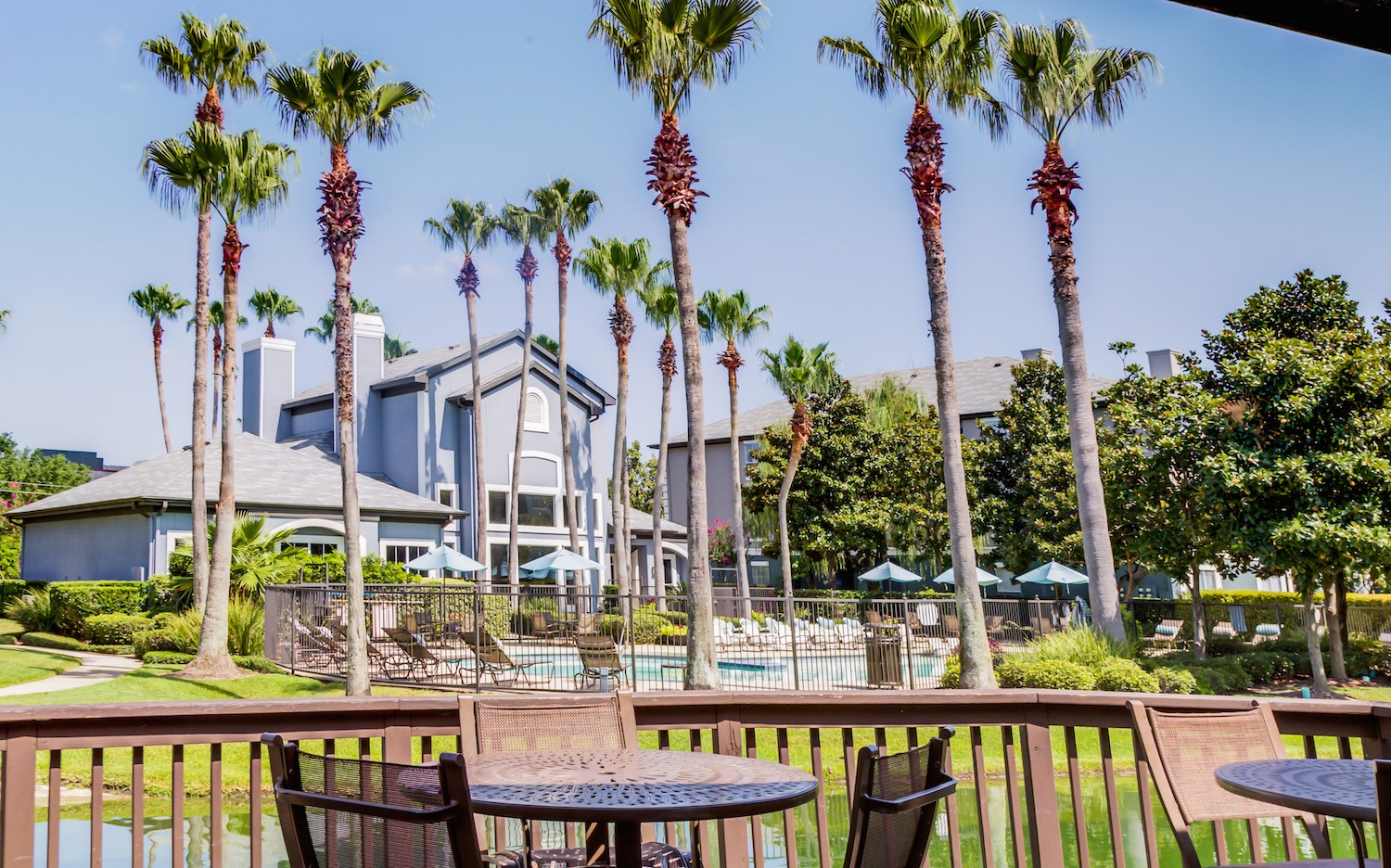Palms At Clear Lake