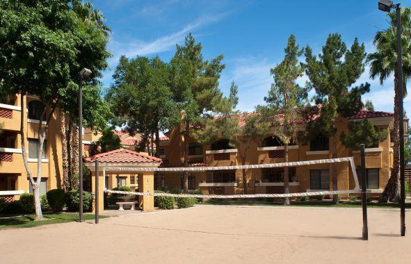 Camden San Paloma